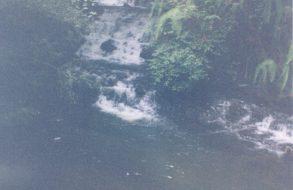 Nohkalikai Falls(6)