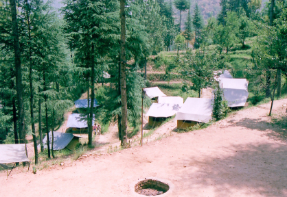 camping in india(6)