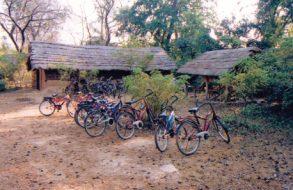 Cycling(1)