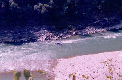 Rafting trip to Rishikesh (12)