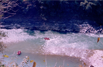 Rafting trip to Rishikesh (23)