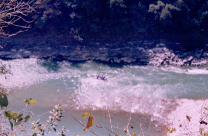 Rafting trip to Rishikesh (24)