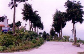 Classic Hilltop Resort, Chamba, Uttarakhand(21)