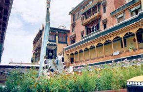 Leh Ladakh tour(16)