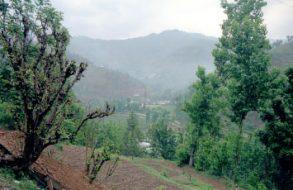 Uttarakhand Family Trip(13)