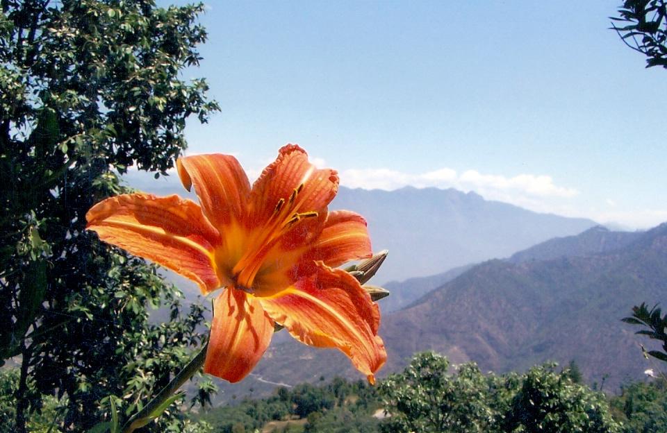 vacations in uttarakhand(3)