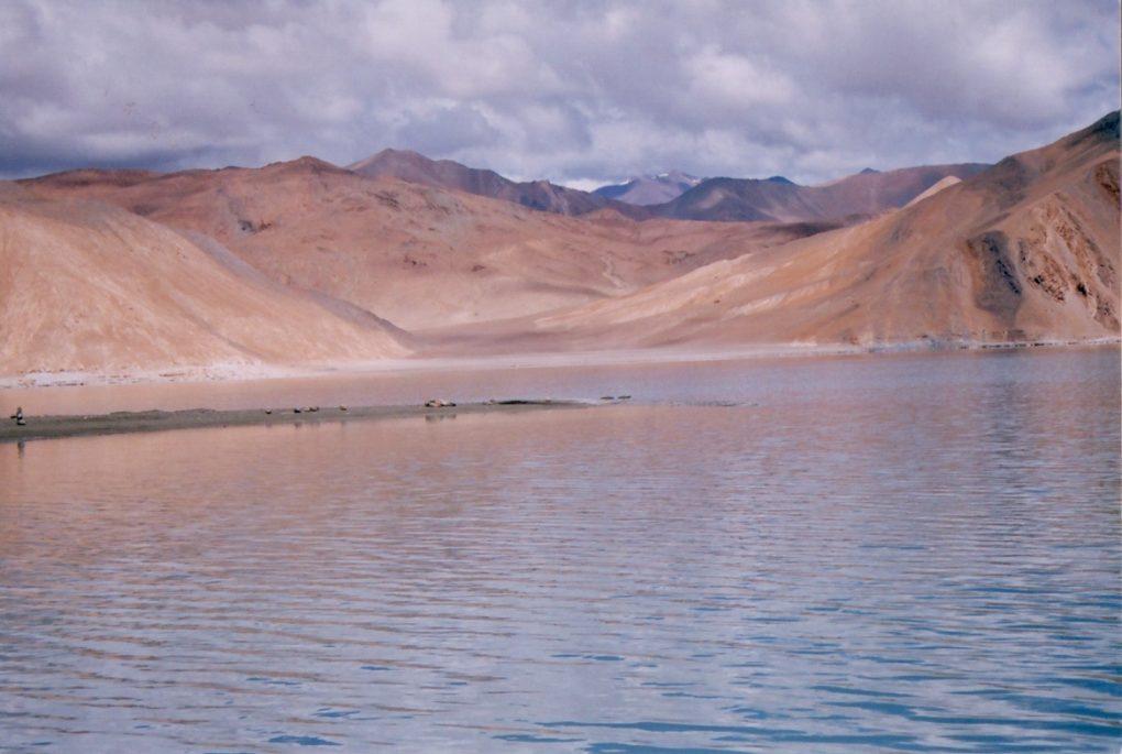 wilderness vacations in ladakh(25)