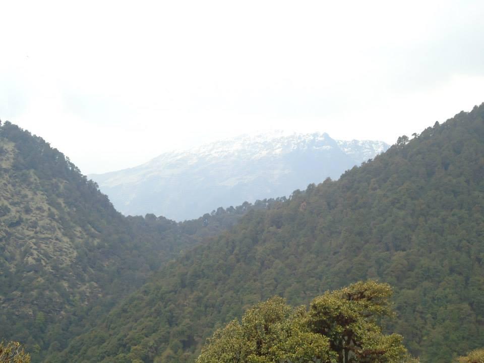 chopta-tungnath-trek-159