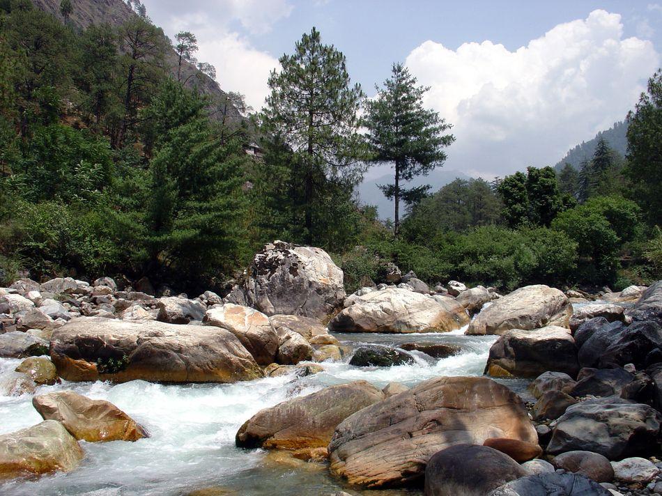 himalayan-trout-house-nagini