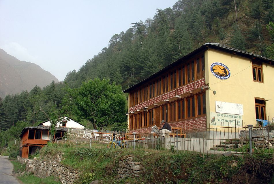 himalayan-trout-house-trout house